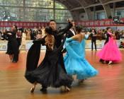 2017年第七届陕西省大学生体育舞蹈暨健身交谊舞锦标赛 (7)