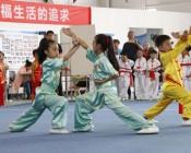 2018年陕西省中小学生武术套路比赛 (1)