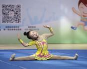 2018年陕西省中小学生健美操、艺术体操、啦啦操锦标赛 (4)